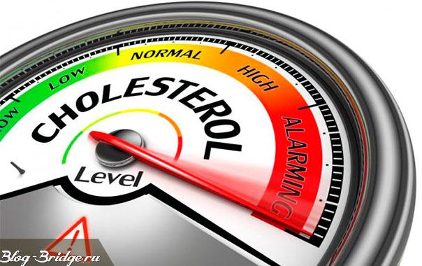 как снизить холестерин общий