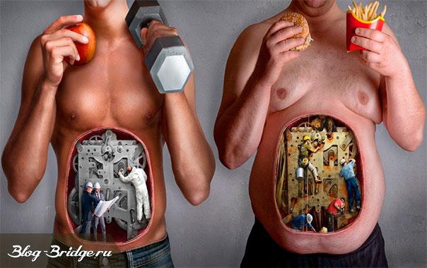 что-такое-здоровое-питание