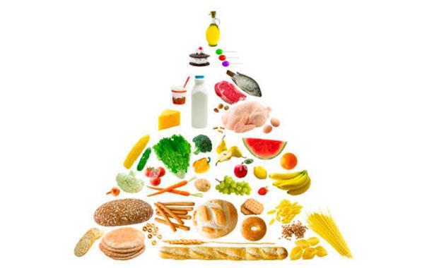 пищевая-пирамида